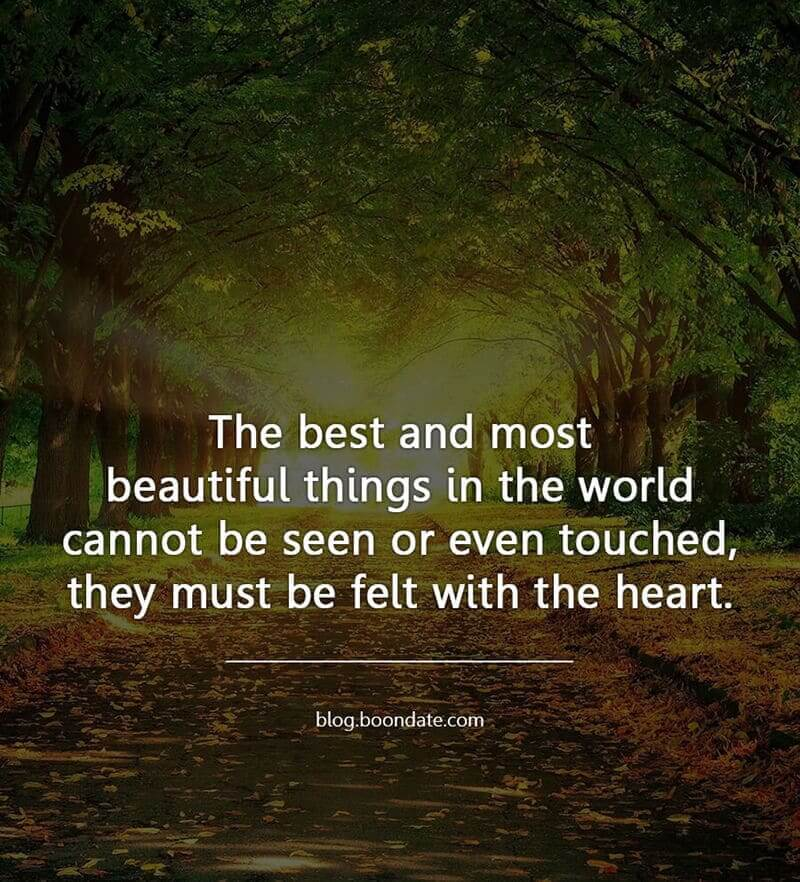 The best and most beautiful things in the world cannot be seen or even touched they must be felt with the heart.